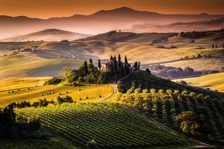 Private - Chianti Tour with wine tasting 8 hrs From Castelnuovo Berardenga